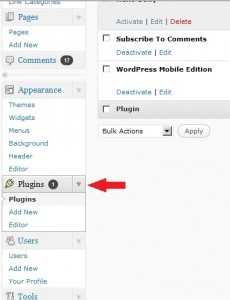 Installing WordPress Plugins Step 1